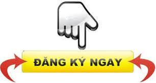 đăng ký tư vấn thủ tục đăng ký xe ô tô